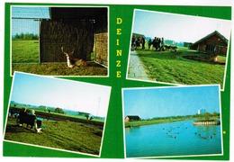 Deinze Brielmeersen, Dierenpark (pk55658) - Deinze