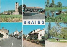 BRAINS (44). Souvenir De ... 6 Vues: Moulin De La Foëlle, Marie, Port Hamoneau, Rue Principale, Lotissement, Dolmen - France