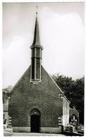 Deinze Bachte Kerk H Petrus (pk55662) - Deinze