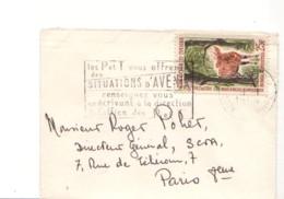 COTE D'IVOIRE : 1964 - Lettre Pour La France - Antilope Bongo - Côte D'Ivoire (1960-...)