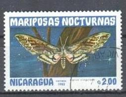 """Papillon """"Agrius Cingulata"""" (Insecte) - Nicaragua - 1983 - Nigeria (1961-...)"""