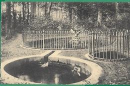 ! - Belgique - Beloeil - La Belle Baigneuse (Les Trois Fontaines Du Parc) - Avec Timbre COB OBP 279 - Beloeil