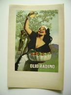 OLIO RADINO  Illustrato Da Gino BOCCASILE Cartoncino Originale Anni '50  NON VIAGGIATA COME DA FOTO - Illustratori & Fotografie