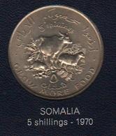 FAO 5 Scellini Schilings 1970 Somalia Democratic Republic - Somalia