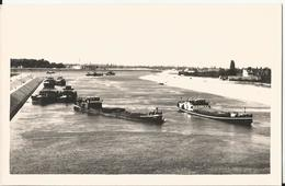 Photo -  Superbe Cliché - Péniches à Neuf Brisach En 1959 - Le Canal D'Alsace- Péniche - Bateau - Schiff-68 - Haut Rhin - Barcos