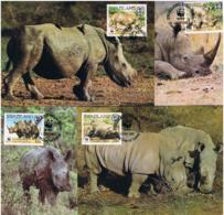 Swaziland 1987 Tiere/Nashorn Mi.Nr. 528/31 Kpl. Satz Gestempelt Auf Maximum Karten - Swaziland (1968-...)