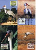 Malawi 1987 Tiere Mi.Nr. 477/80 Kpl. Satz Gest. Auf Maximumkarten - Malawi (1964-...)