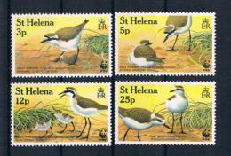 St. Helena Vögel Kleines Lot 4 Werte ** - St. Helena