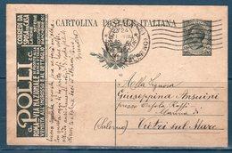 Italia 1919 Intero Pubblicitario  N.34 POLLI E C. US - 1900-44 Vittorio Emanuele III