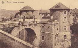 Namur, Château Des Comtes (pk57320) - Namur