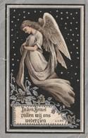 GEBOREN TE SELZAETE 1899+1911 HONERE DE COLVENAER. - Religion & Esotérisme