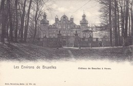 Environs De Bruxelles, Château De Gaesbeek (pk57329) - Sint-Pieters-Leeuw