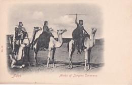 ADEN       ARABS OF JUNGLES CARAVANS - Yémen