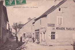 SELONGEY       LA PRATENEE.    LA MENAGERE FRANCAISE - France