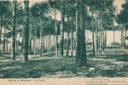 V.717.  Marina Di Minturno - Latina - 1937 - Other Cities