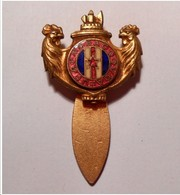 "Insigne Badge Broche Boutonnière "" Anciens Combattants ""   - - Insignias"