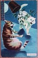 Cpa CHAT ,2 CHATS Bruyants SUR UN TOIT Et POT DE FLEURS , LUNE , 1907 THE BOUQUET ! CAT KITTEN ON THE TILES . KATZE - Chats