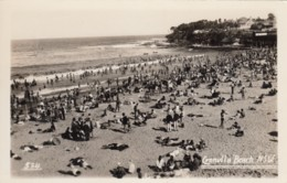 Cronulla Beach NSW Australia, Sunbathers Crowd On Beach, C1920s/30s Vintage Real Photo Postcard - Australie