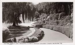 Melbourne VIC Australia, Alexandra Gardens Pathways, C1930s/40s Vintage Real Rose #P.13549 Photo Postcard - Melbourne