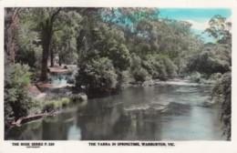 Warburton VIC Australia, Yarra River In Springtime, C1950s/60s Vintage Real Photo Postcard - Australie
