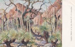 Northern Australia, Rowell Artist Signed Image 'Yakka Trees' Painting On C1950s Vintage Postcard - Outback