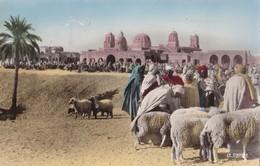 COLLECTION SAHARIENNE - Marché Dans Le Sud - Scènes & Types