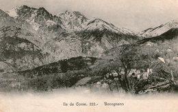 (95) CPA  Bocognano  (Bon Etat) - France