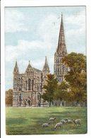 CPA - Carte Postale Royaume Uni Salisbury - Cathedral- WestFront VM1561 - Salisbury