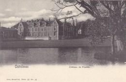 Chatelineau, Château De Presles (pk57343) - Chatelet