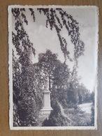 Kostschool Heilig Hart Van Maria Te 's Gravenwezel, Een Hoekje Van Het Park --> Beschreven - Schilde