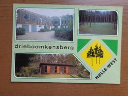 Malle West, Drieboomkensberg --> Beschreven - Malle
