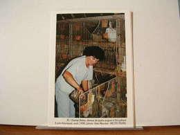 CHANTAL BRIERE, ELEVEUR DE LAPINS ANGORA A ST-LYPHARD (44) AOUT 1990 - 300EX. - ETAT NEUF - Saint-Lyphard