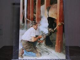 """BERNARD HERREMAN FERRE UN """"TRAIT DU NORD"""" DANS SA MARECHALERIE, WORMHAUT (59), AOÛT 1992 - 300 EX./ ETAT NEUF - Wormhout"""
