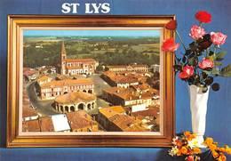Saint St Lys - Autres Communes