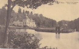 Arlon, Château De La Trapperie, Etang Et Château (pk57363) - Arlon