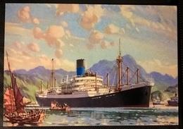 TRANSATLANTICI - FUNNEL LINE - Barche