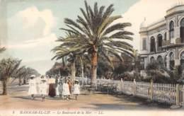 HAMMAM-EL-LIF - Le Boulevard De La Mer - Tunisie