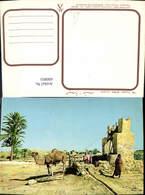 600893,Jerba Un Puits Kamel Tunisia - Tunesien