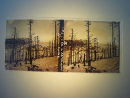 Plaque En Verre Positif , Guerre 14/18 - COL DU SATTELKOPF - ALSACE. - Plaques De Verre