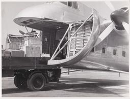 ENGLAND  -  PHOTO PHOTOGRAPHY - AIRPLANE - AIRCRAFT - BRISTOL NEW TYPE 170 - MILITARY TRANSPORT   - 18,6 Cm X 24,2 Cm - Aviation
