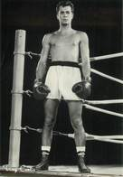 """CPSM BOXE """"Tony Curtis"""" - Boxing"""
