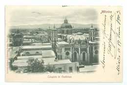 MEXICO - Colegiala Guadalupe - Mexique