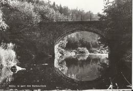 REDU Le Pont Des Barbouillons 1973 (Libin) - Libin