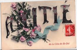 AMITIE DE LA COTE DE SAINT DIE - Saint Die