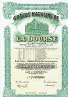 BELGIQUE-MAGASINS DE LA BOURSE. Grands Magasins De La Bourse.  Bruxelles. DECO - Shareholdings