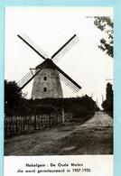 Foto HEKELGEM - De Oude Molen Die Werd Gerestaureerd In 1957-1958 - Affligem