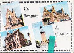 Tre-  Belgique  Cpsm  UN BONJOUR  De CINEY - Ciney