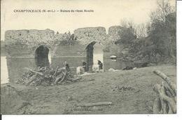 Champtoceaux-Ruines Du Vieux Moulin - Champtoceaux