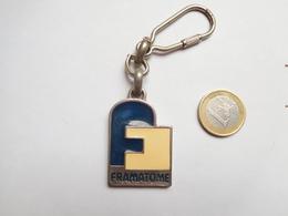 Beau Porte Clés , EDF , Centrale Nucléaire , Framatome , Lyon , Rhône - Porte-clefs