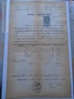 ZA185.7  Old Document Czechia - Olomuc -ROZNOV  Frantisek Halamicek 1875 - Birth & Baptism